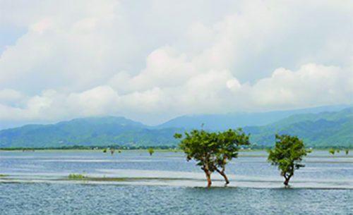 ডিঙ্গাপোতা হাওর