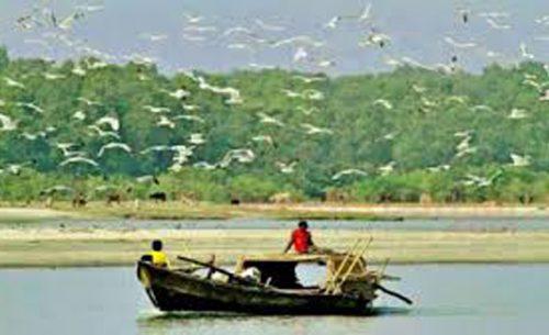 মনপুরা দ্বীপ